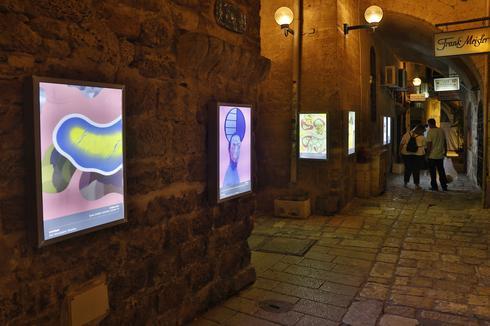גלריית הרחוב בסמטאות יפו העתיקה. צילום: גיא יחיאלי