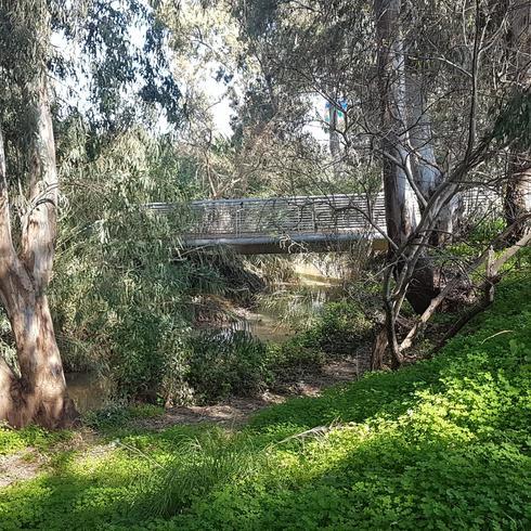 הגשרון מעל נחל הירקון